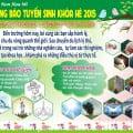 Trường mầm non Họa Mi tuyển sinh Khóa hè 2015