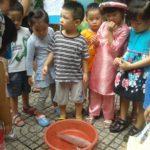 Hoạt động vui chơi ngoài trời của bé tại trường mầm non Họa Mi 12/2016 - Hình 1