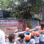 Các bé trường mầm non Họa Mi tham quan dã ngoại công viên Đầm Sen - Hình 11