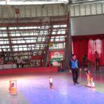Các bé trường mầm non Họa Mi tham quan dã ngoại công viên Đầm Sen - Hình 15