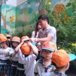 Các bé trường mầm non Họa Mi tham quan dã ngoại công viên Đầm Sen - Hình 3